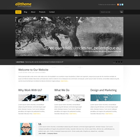 Template Image for BlackBoard - WordPress Theme