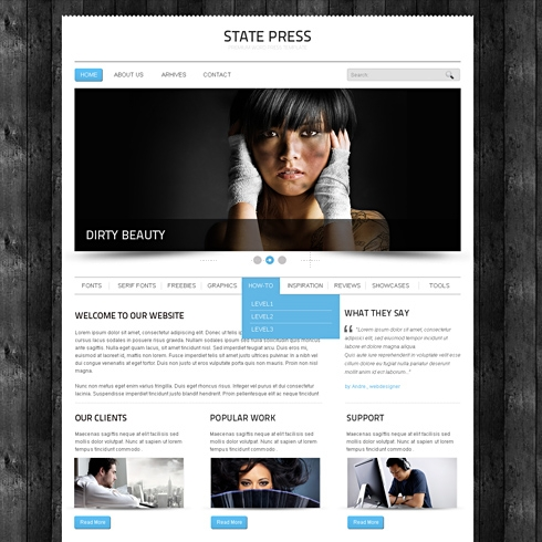 Template Image for StatePress - Website Template