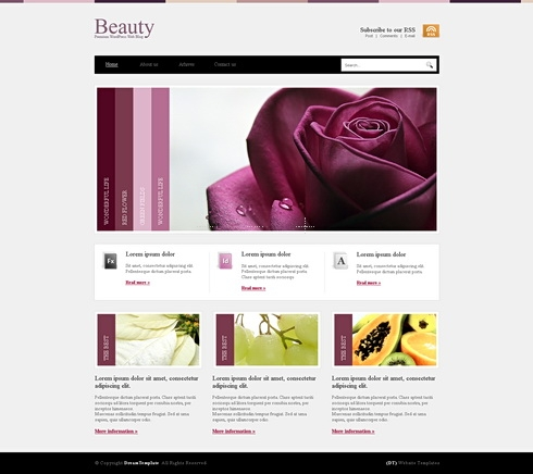 Template Image for Beautywp  - HTML Template