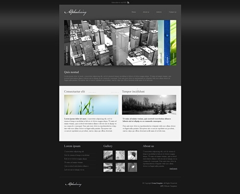 Template Image for AlphaDark  - HTML Template