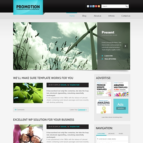 Template Image for PromoTheme - Website Template