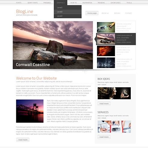 Template Image for BlogBox - WordPress Template