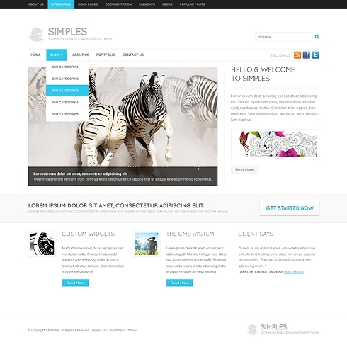 Template Image for Basics - WordPress Template