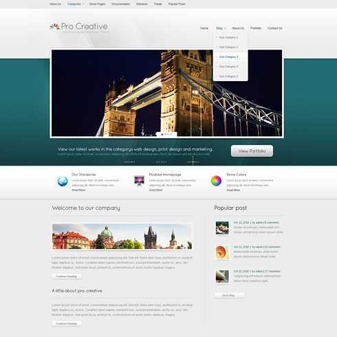 Template Image for ProCreative - WordPress Template