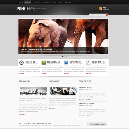 Template Image for Prime - WordPress Theme