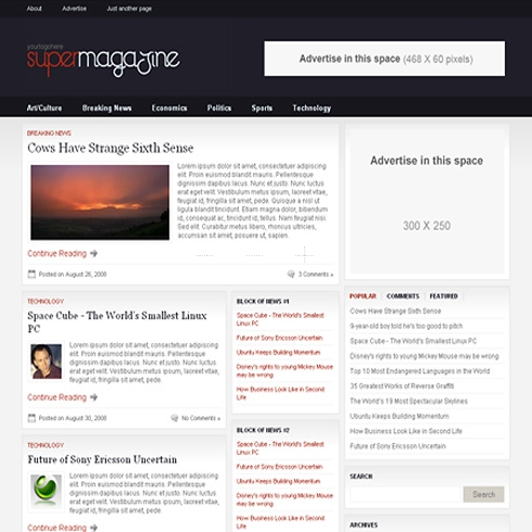 Template Image for SuperMagazine - WordPress Template