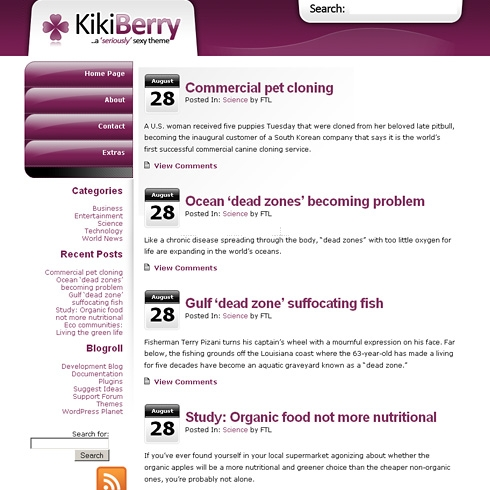 Template Image for KikiBerry - WordPress Theme