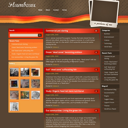 Template Image for Flambeau - WordPress Theme