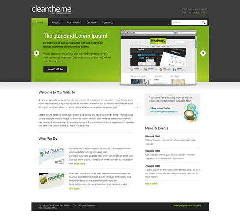 Template Image for CleanTheme - Website Template