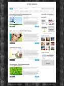 Template: StatePress - Website Template