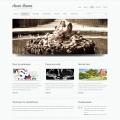 Template: SuperClean - Website Template