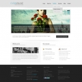 Template: CleanOnline - WordPress Theme