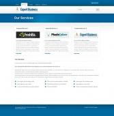 Template: ExpertBiz - Website Template