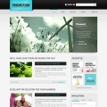 Image for Image for PromoTheme - Website Template